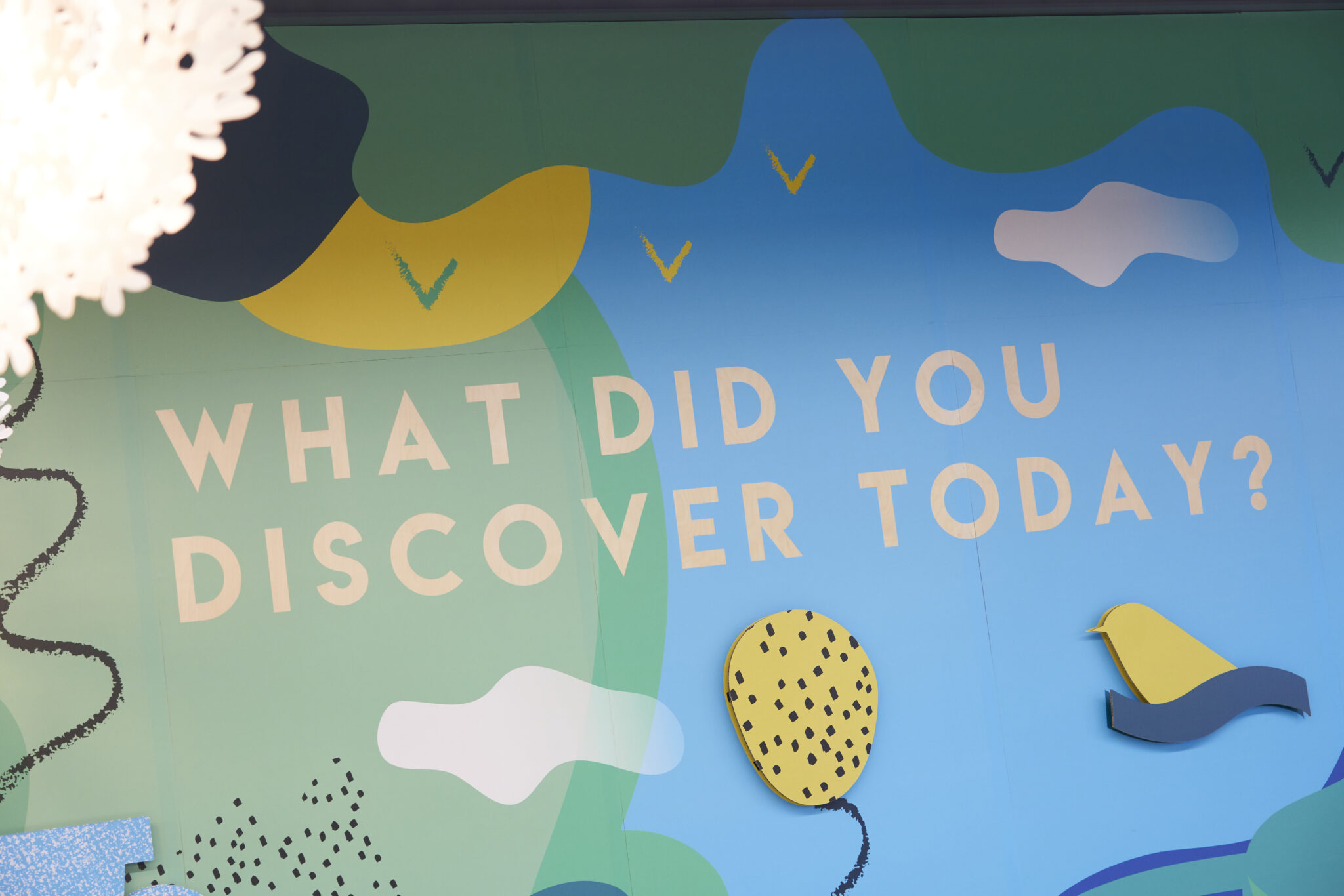 What did you discover at Moss & moor today?
