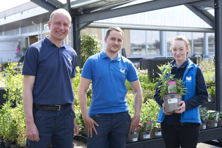 Moss & Moor, horticultural team 2